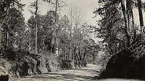Trace-Road,Claiborne-Co285w