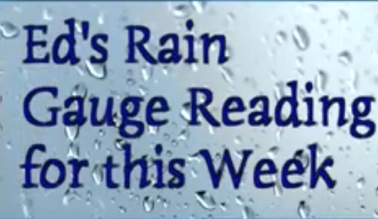 Ed rain
